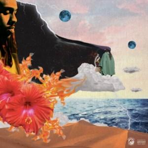 Rexx Life Raj - Flowers